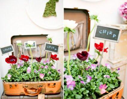 Kwietnik z walizki, walizka na kwiaty, co zrobić ze starą walizką, jak wykorzystać starą walizkę, Pomysł na starą walizkę, drugie życie rzeczy, ekomeble, vintage,