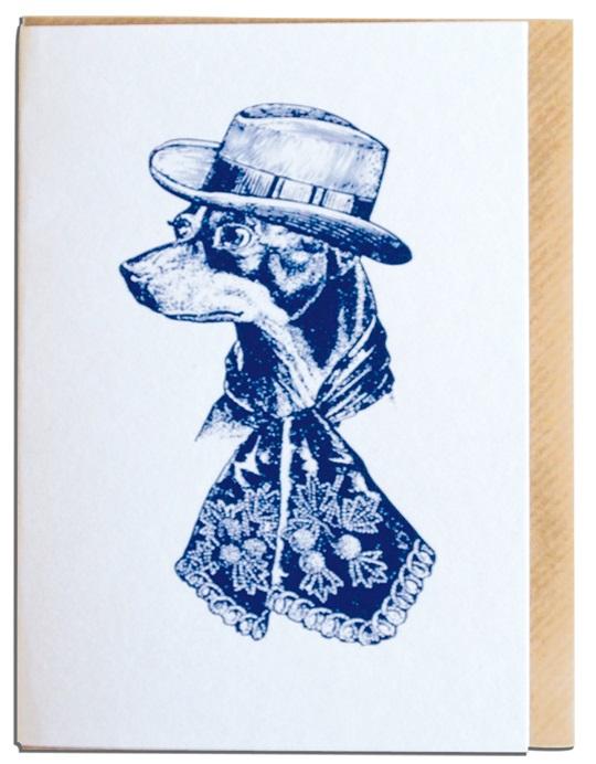 Sophisticated dog