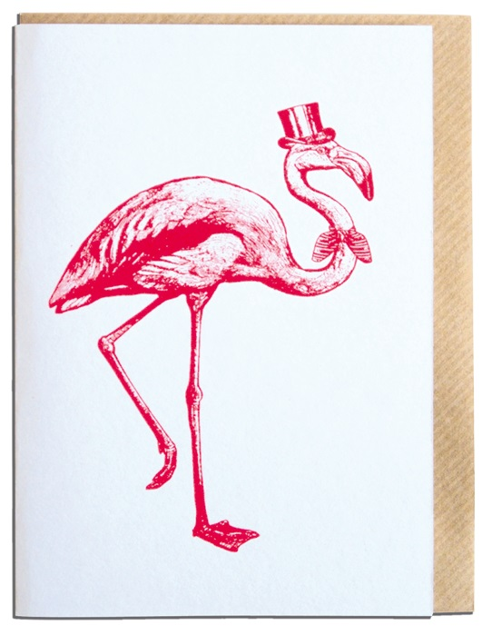 Sophisticated flamingo