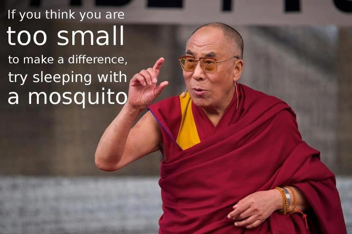Mosquito Dalai Lama
