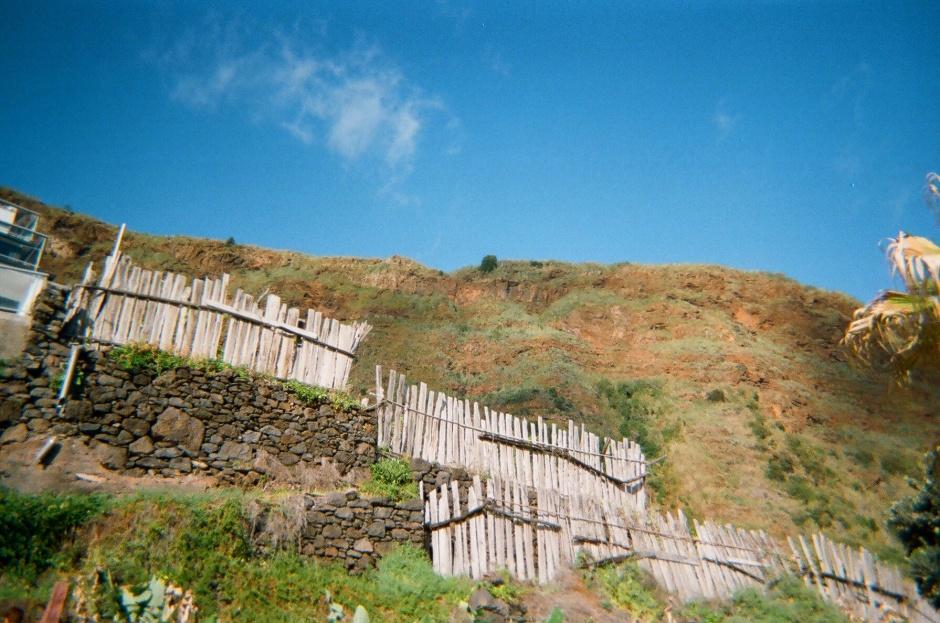Wakacje na Maderze (6)